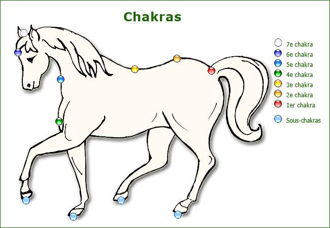 rk701-chakras-cheval.jpg